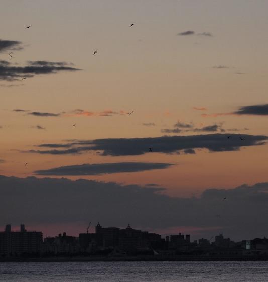 8月上旬の明石海峡の夕日2.jpg